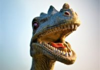 Загадочная форма рака найдена у динозавров