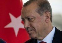 Эрдогана обвинили в поддержке Гюлена