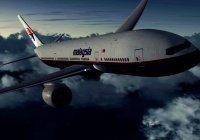 Причиной исчезновения самолета Malaysia Airlines в 2014 году назвали самоубийство пилота