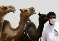 В Катаре выявили случай заражения коронавирусом, но не китайским