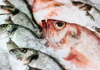 Выявлены опасные для здоровья виды рыб