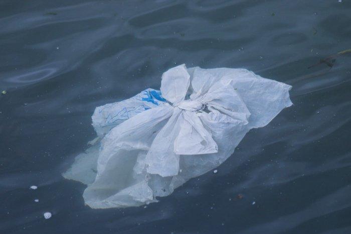 Большое тихоокеанское мусорное пятно, по последним оценкам, достигло площади в 1,6 миллиона квадратных километров