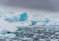 Катастрофическое таяние льда зафиксировано в Антарктиде