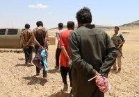 Турция депортировала более 250 террористов-иностранцев
