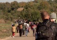 СМИ: к границам Турции с европейскими странами устремились тысячи беженцев