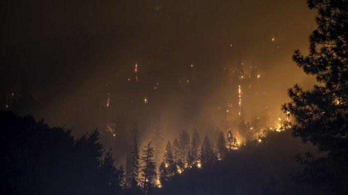 Теплая, не свойственная марту погода повлечет за собой раннее наступление пожароопасного периода в Приморье
