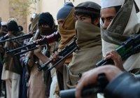 МИД РФ: ИГИЛ постарается сорвать соглашение США и «Талибана»