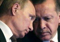 В Кремле рассказали об ожиданиях от предстоящей встрече Путина и Эрдогана