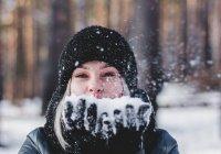 Выяснилось, чем опасна аномально теплая зима