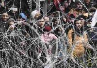 Границу Турции с ЕС пересекли более 142 тысяч беженцев