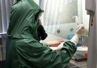 Первый случай заражения коронавирусом зафиксирован в Брунее