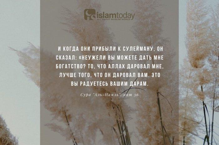 50 запретов Корана