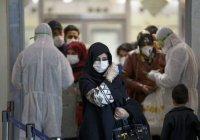В Иране число жертв коронавируса перевалило за 500 человек