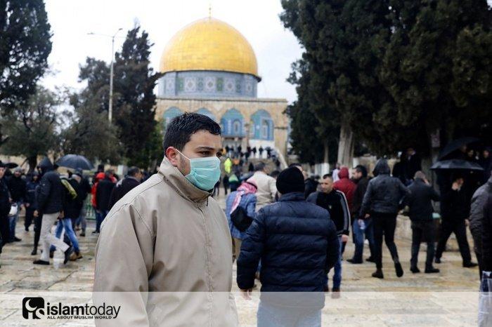 Как коронавирус отразился на мечетях? (Источник фотографий: vk.com)