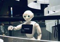 В России появится первая роботизированная гостиница