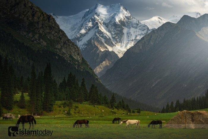 Киргизия. (Источник фотографий: yandex.ru)