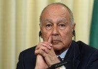 Генсек ЛАГ назвал объединение «последней крепостью» арабского мира
