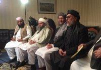Кабул и «Талибан» провели первые онлайн-переговоры