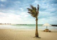 В ОАЭ закрыли пляжи, парки и кинотеатры