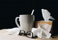 Названы субъекты, где превышен эпидпорог по заболеваемости гриппом