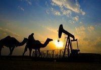 Саудовской Аравии предрекли «невероятный кризис»