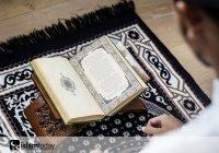 Можно ли шутить, используя аяты Корана?