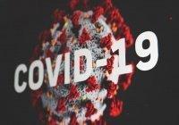 Число заразившихся CoViD-19 в мире превысило полмиллиона
