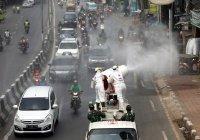 В Индонезии введен режим ЧС в связи с коронавирусом