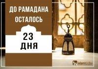 23 дня до Рамадана: что такое «таваккуль»?