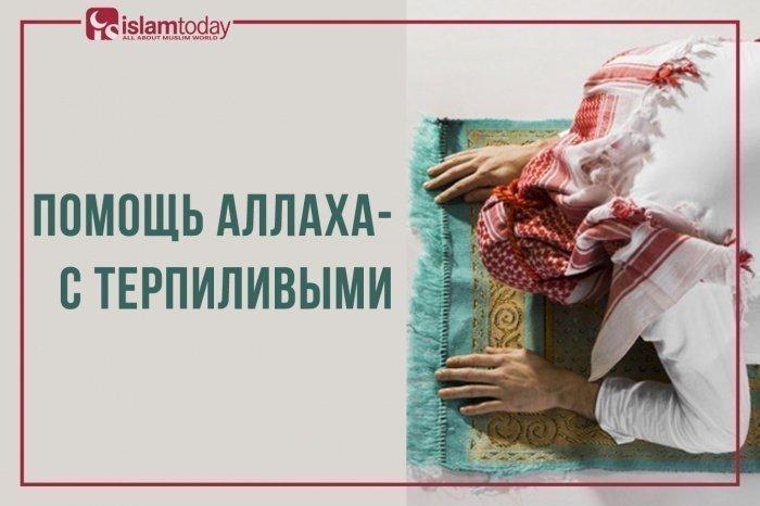 Помощь Аллаха - с терпеливыми. (Источник фото: freepik.com)