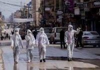 ООН оценила экономические потери арабских стран из-за коронавируса