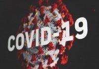 Озвучены темпы роста эпидемии коронавируса в России