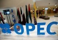 Саудовская Аравия хочет созвать экстренную встречу ОПЕК+