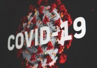 Биологи записали «звук» коронавируса