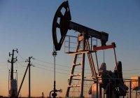 СМИ: Россия и Саудовская Аравия не договорились по нефти