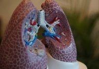 Стало известно о влиянии COVID-19 на дыхательную систему