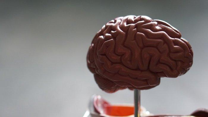 У некоторых пациентов с COVID-19 нарушений в легких не было, однако имелись рассеянное сознание либо эпилептические признаки