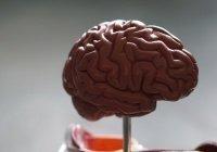 Ученые: коронавирус способен поражать головной мозг