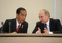 Президенты России и Индонезии договорились о сотрудничестве в борьбе с коронавирусом