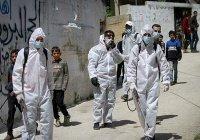 В Палестине оценили масштабы распространения коронавируса