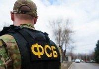 В России нейтрализовали организацию сатанистов