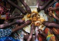 В ООН оценили вероятность глобального голода из-за пандемии