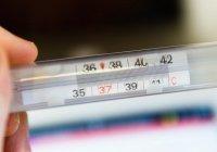 Выявлена температура гибели коронавирусной инфекции