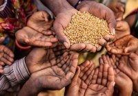ООН: число голодающих в мире может удвоиться из-за коронавируса
