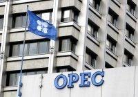 Участники ОПЕК+ обсудили нынешнее состояние рынка нефти