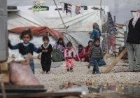 Первый случай COVID-19 подтвердили в лагере беженцев в Ливане