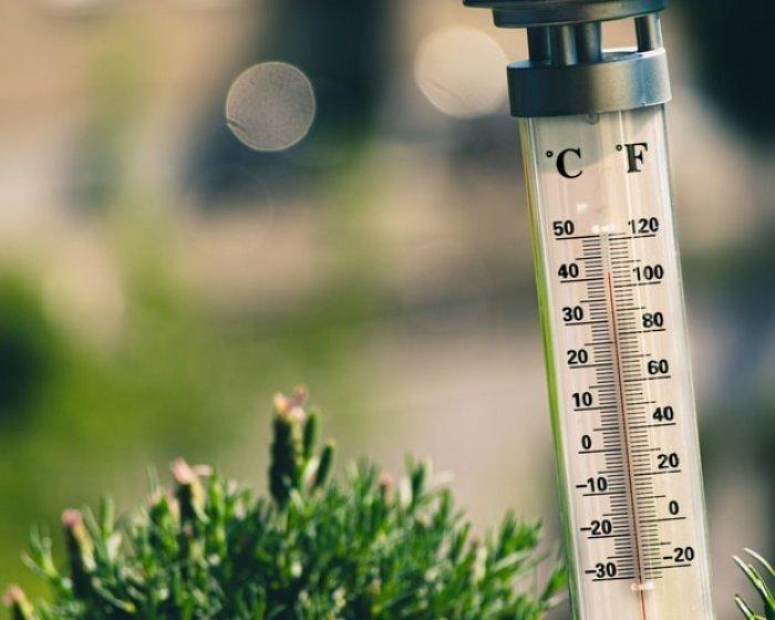 По словам синоптика, если год будет не рекордно теплым, то вторым либо третьим в ранге температур