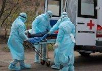 В Дагестане число заразившихся коронавирусом приближается к тысяче