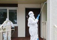 ВОЗ проверит Таджикистан и Туркменистан, где «нет коронавируса»