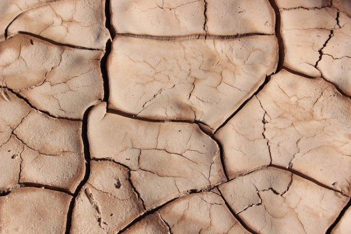Некоторые гидрометеорологически опасные явления (волны тепла и жара), в соответствии со статистикой, происходят все чаще